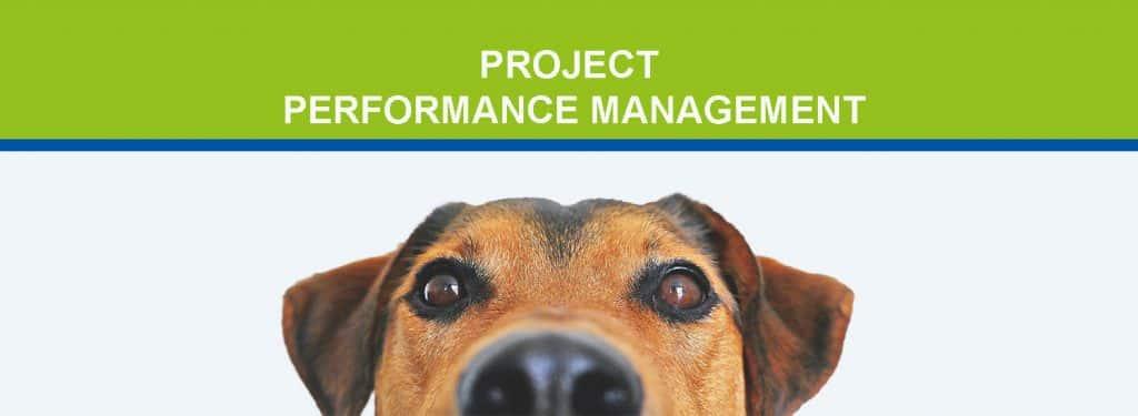 Project Performance Management Blog Header