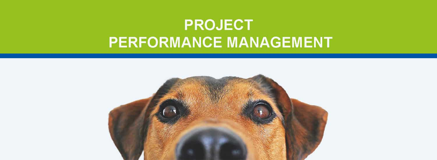 Project Performance Management Blog Header