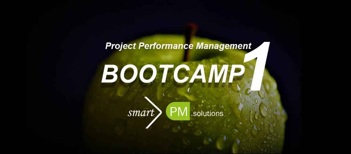 Project Performance Management Bootcamp 1 smartPM.solutions